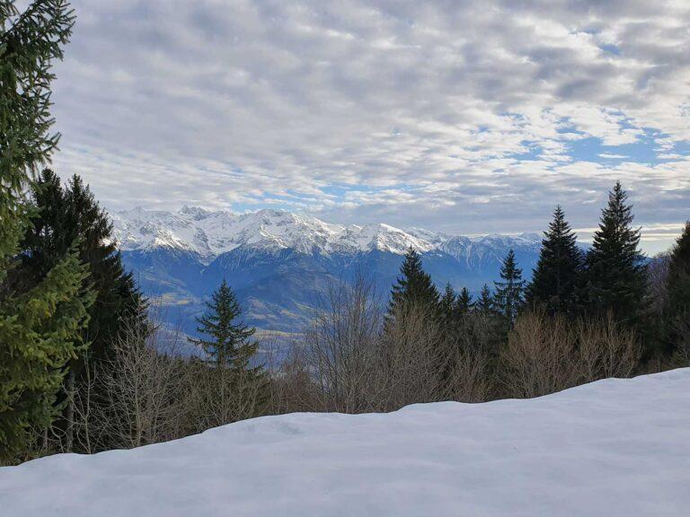 Chartreuse Ballade Snow